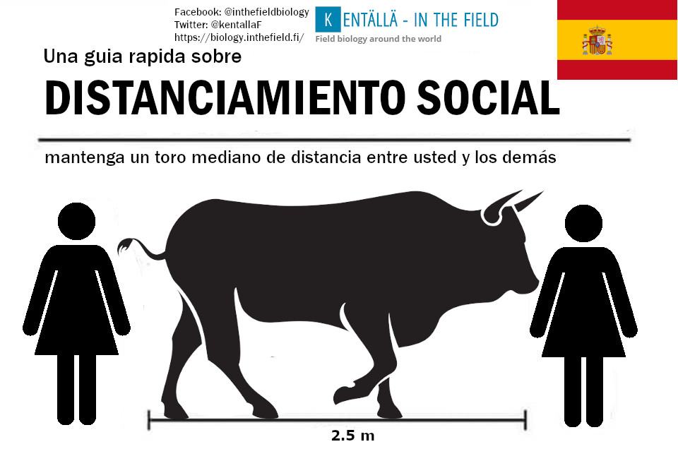 Notice Spaniards that we have changed the measure to be 2.5m. This bull will keep you well over WHO guidelines for physical distancing.