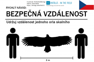 Czech Republic and the golden eagle. The wings will keep you safe!