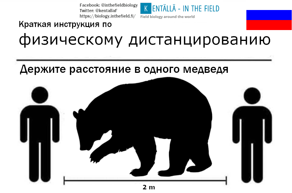 Russia's national animal, the bear.