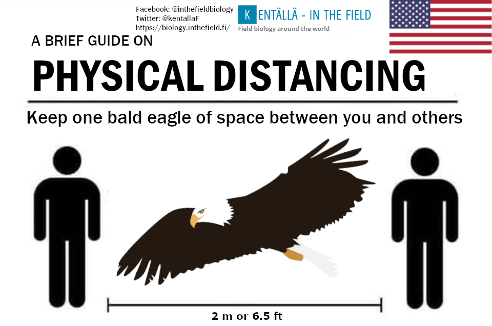 The national symbol of the United States and an absolutely stunning bird. That wingspan is more than the 6 ft distance recommended by the government. Thus the eagle will bring you right into the same range of 2m safety of your metric nation friends.