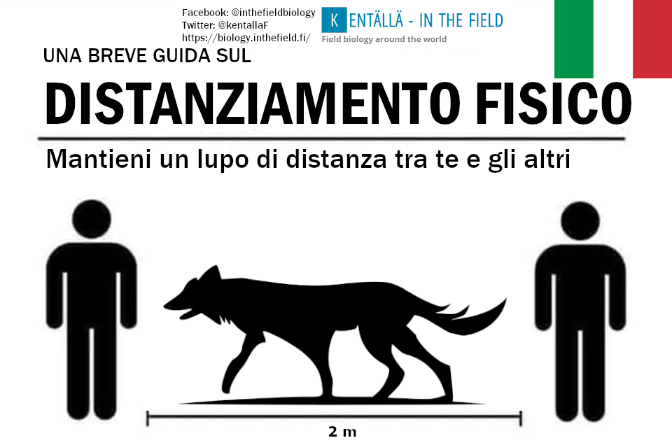 The national animal of Italy is the wolf, which rebounded from under 100 individuals in the 70's to recent estimates nearing 2000. Keep your wolves safe Italy, and they will keep you safe too (just make sure you include the tail in the measurement!)