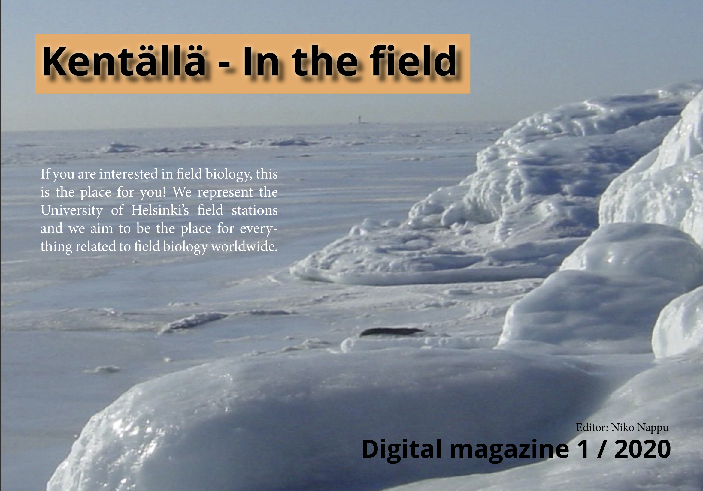 Kentällä digital magazine 1/2020